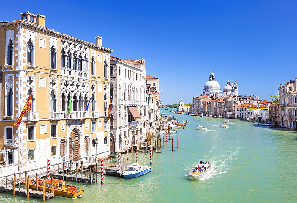 Vaporettos passing Palazzo Cavalli-Franchetti and the Santa Maria della Salute on the Grand Canal, Venice, UNESCO World Heritage Site, Veneto, Italy, Europe