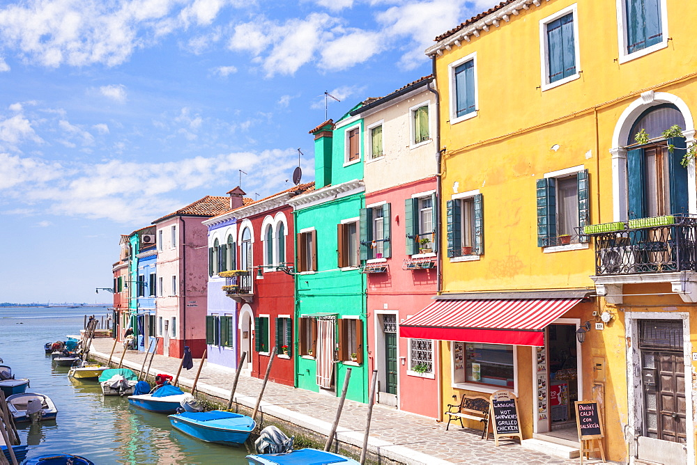 Brightly coloured fishermens cottages on the island of Burano in the Venice lagoon (Venetian lagoon), Venice, UNESCO World Heritage Site, Veneto, Italy, Europe - 698-3247