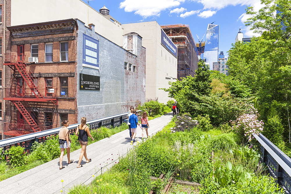 Lower Manhattan tourist attraction, The High Line, urban park, an elevated disused rail line, New York City, United States of America, North America - 698-3285
