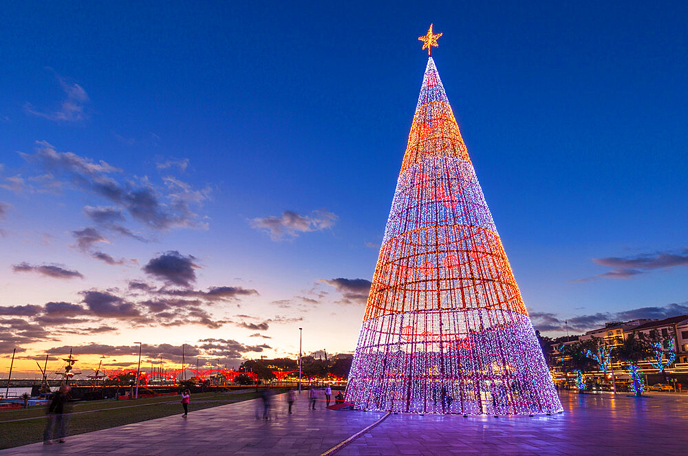 Modern design of Christmas tree with LED lights on the seafront promenade in Funchal, Madeira, Portugal, EU, Europe - 698-3302