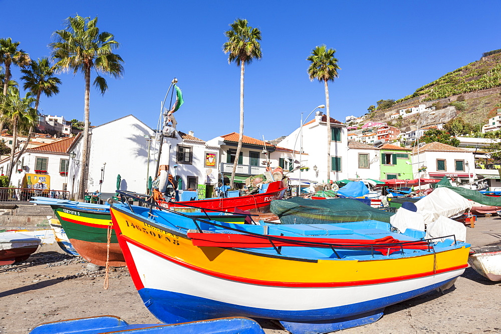 Traditional colourful fishing boats on the beach in Camara de Lobos fishing village, Madeira, Portugal, Atlantic, Europe - 698-3303