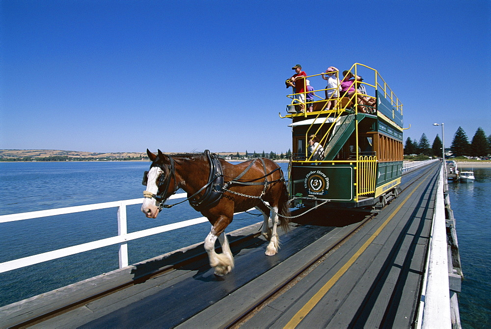 Horse drawn tram, Victor Harbour, South Australia, Australia, Pacific