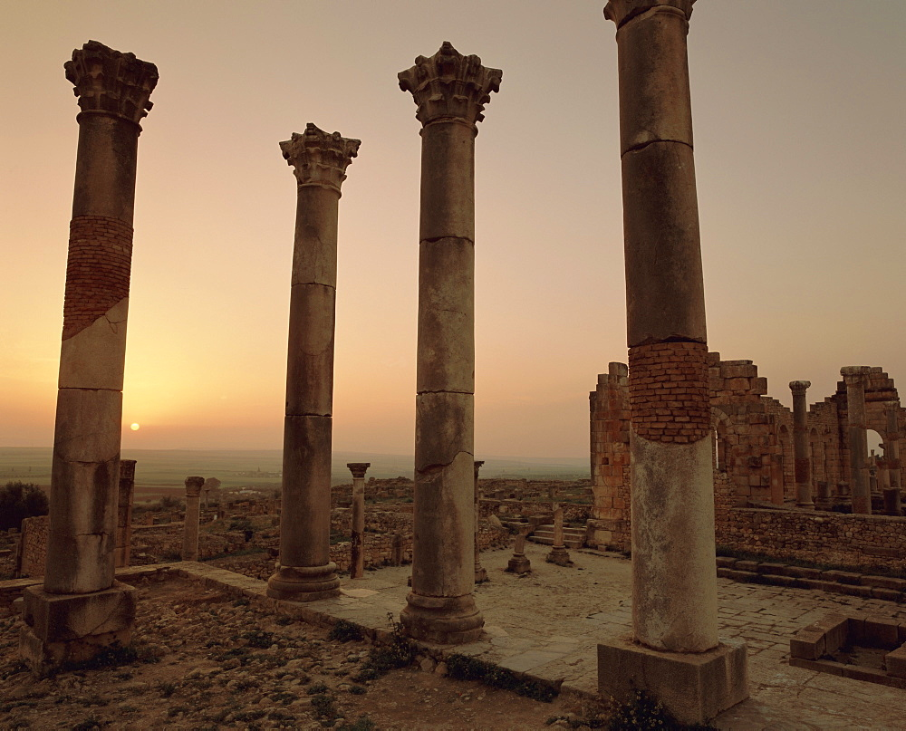 Roman ruins, Volubilis, Morocco, North Africa, Africa