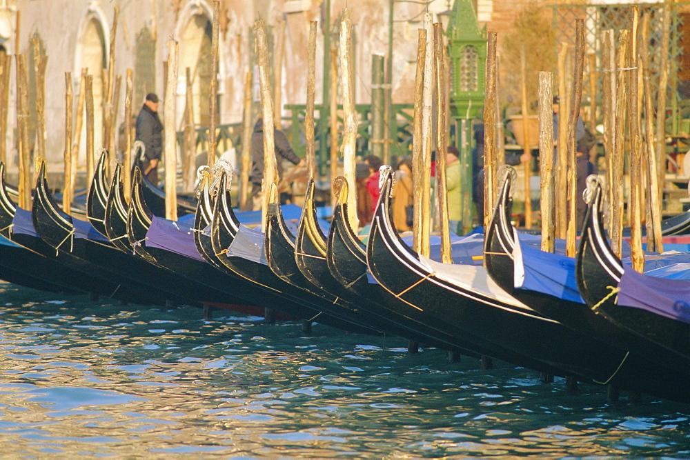 A line of Gondolas, Venice, Veneto, Italy  - 700-9638