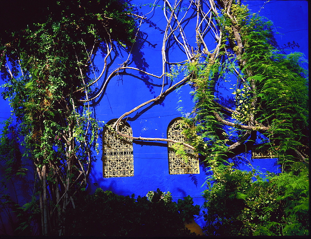 Detail from Majorelle's house and garden, Marrakesh