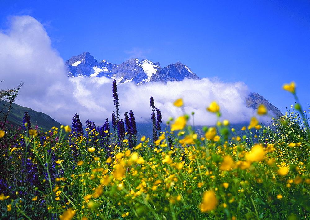 Brianaonnais, La Meije massif
