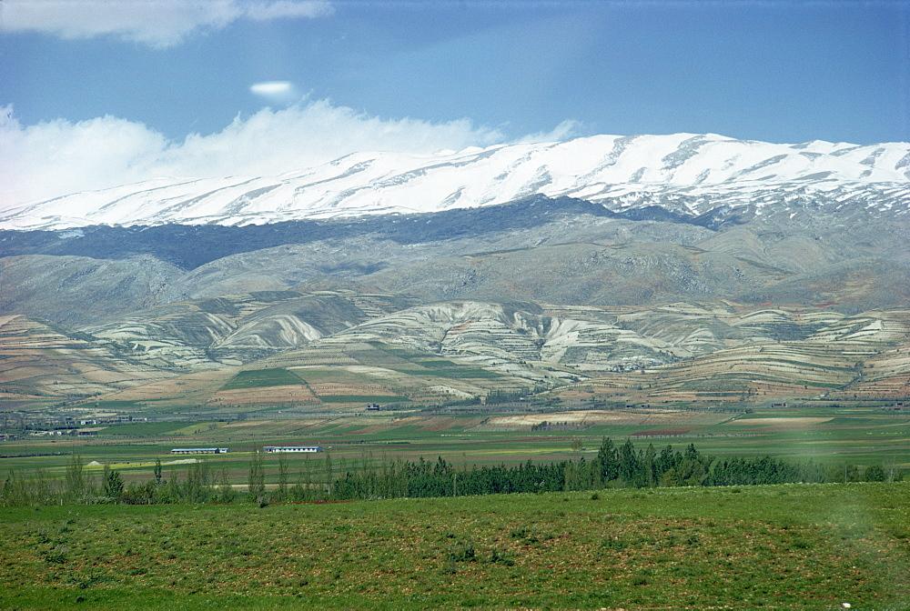 Valley of Bekah, Lebanon, Middle East - 71-322