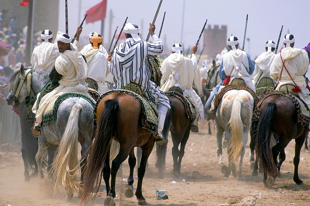 Riders in the Fantasia pour le moussen de Moulay Abdallah, El Jadida, Morocco, North Africa, Africa