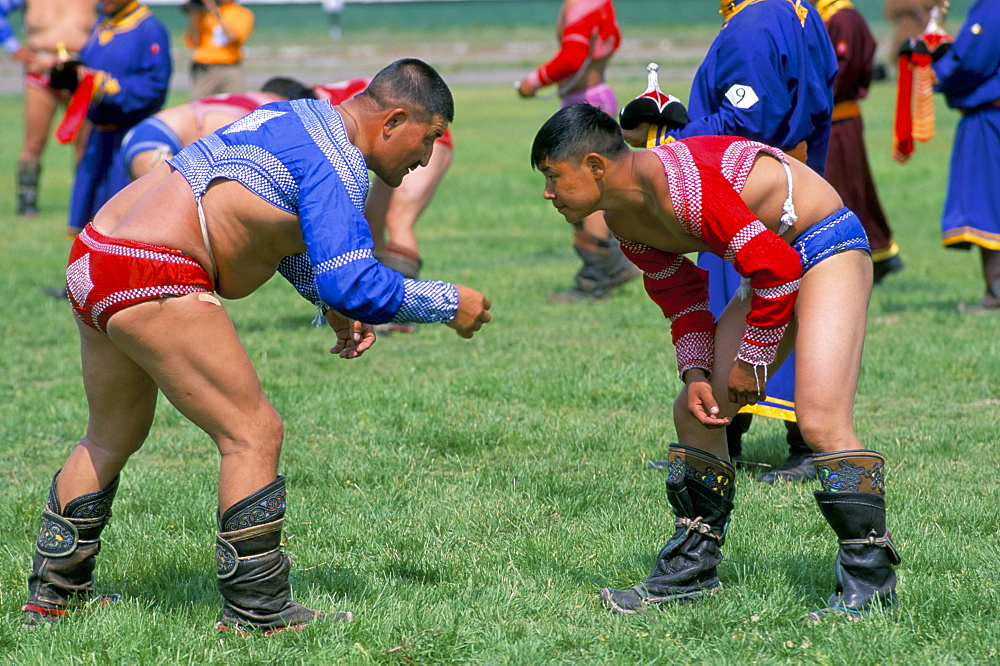 Wrestling match, Naadam festival, Oulaan Bator (Ulaan Baatar), Mongolia, Central Asia, Asia
