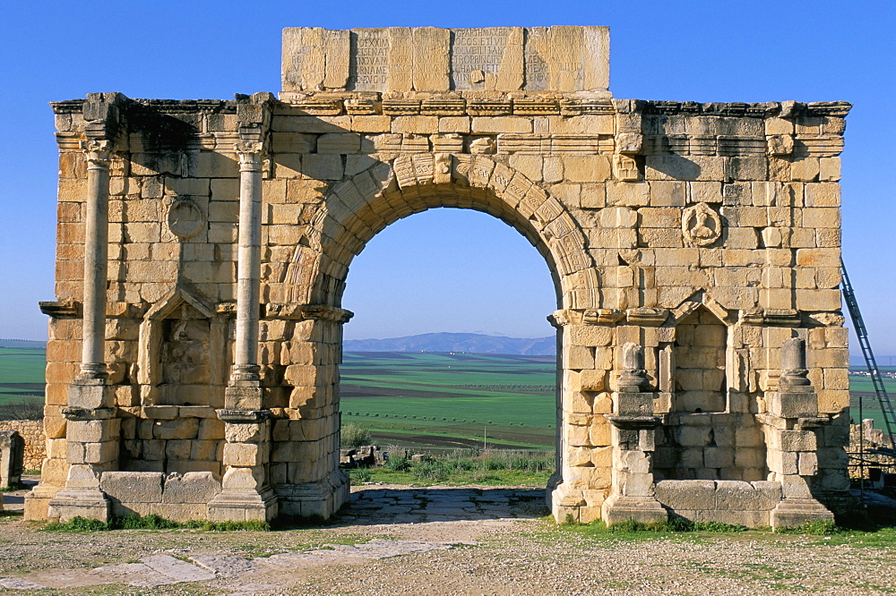 Roman archaeological site of Volubilis, UNESCO World Heritage Site, Meknes region, Morocco, North Africa, Africa