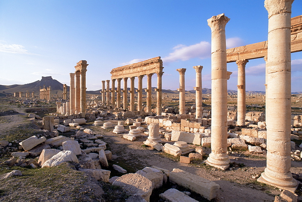Great colonnade and the Arab castle beyond, Palmyra, UNESCO World Heritage Site, Syria, Middle East