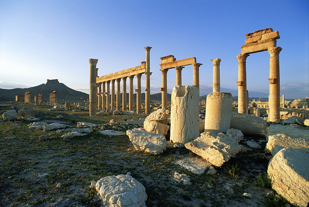 The archaeological site, Palmyra, UNESCO World Heritage Site, Syria, Middle East