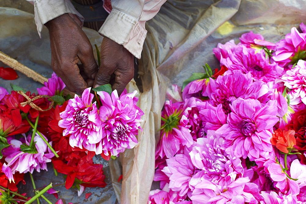 Mullik Ghat flower market, Kolkata (Calcutta), West Bengal, India, Asia