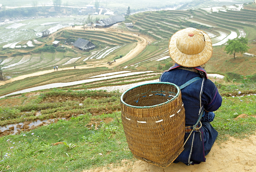 Black Hmong ethnic group and rice fields, Sapa area, Vietnam, Indochina, Southeast Asia, Asia