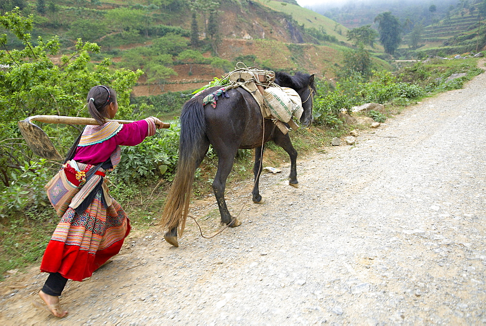 Flower Hmong ethnic group, Ban Pho village, Bac Ha area, Vietnam, Indochina, Southeast Asia, Asia