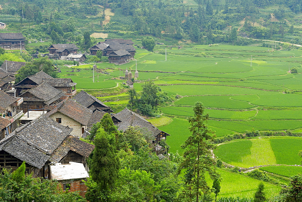 Shui ethnic group in the village around Libo, Guizhou Province, China, Asia