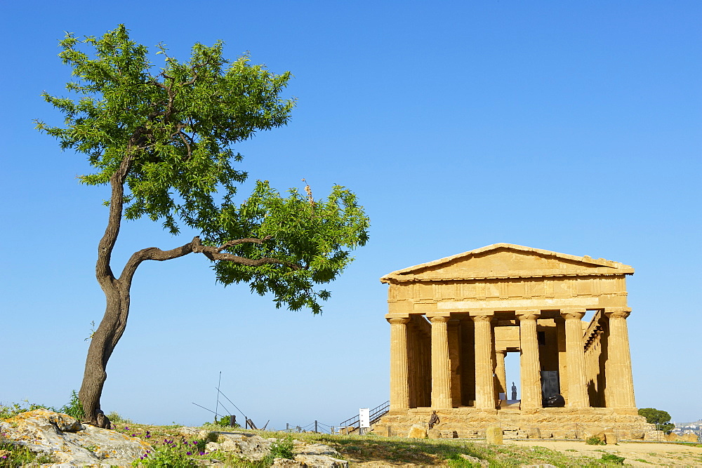 Concordia Temple, Valley of the Temples (Valle dei Templi), UNESCO World Heritage Site, Agrigento, Sicily, Italy, Europe  - 712-2708