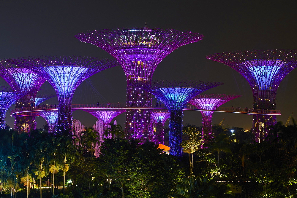 Supertree Grove at night, Garden By the Bay, botanic garden, Marina Bay, Singapore, Southeast Asia, Asia