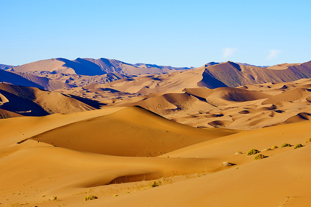 China, Inner Mongolia, Badain Jaran desert, Gobi desert - 712-2942