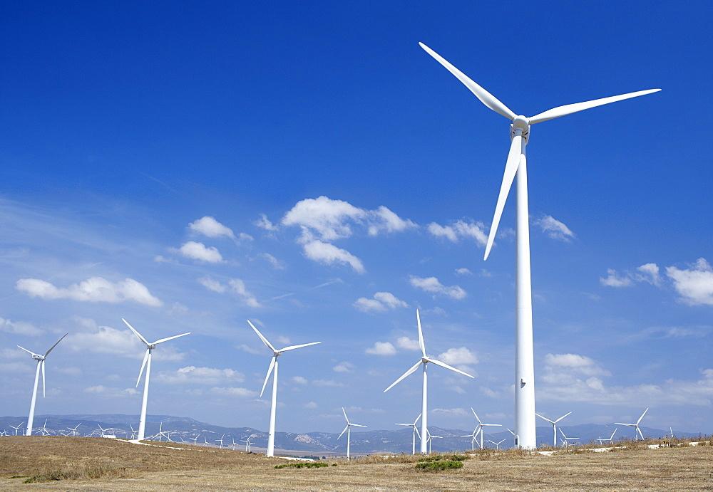 Windmills, Tarifa, Costa de La Luz, Cadiz Province, Andalucia (Andalusia), Spain, Europe