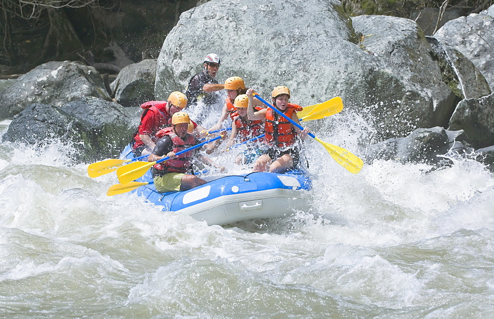 White water rafting, Pacuare River, Turrialba, Costa Rica, Central America - 718-1386