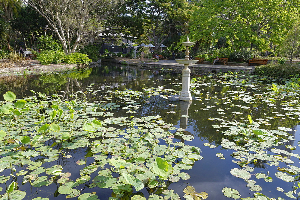 Royal Botanic Gardens, Sydney, New South Wales, Australia, Pacific