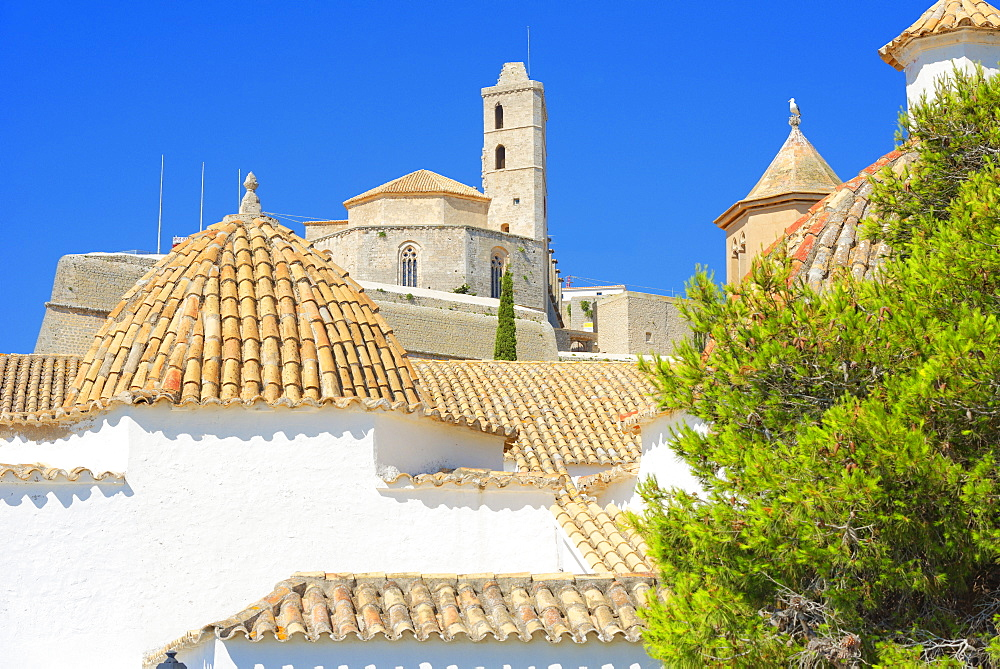 Ibiza Cathedral and Santo Domingo Convent, Old Town (Dalt Vila), UNESCO World Heritage Site, Ibiza, Balearic Islands, Spain, Europe
