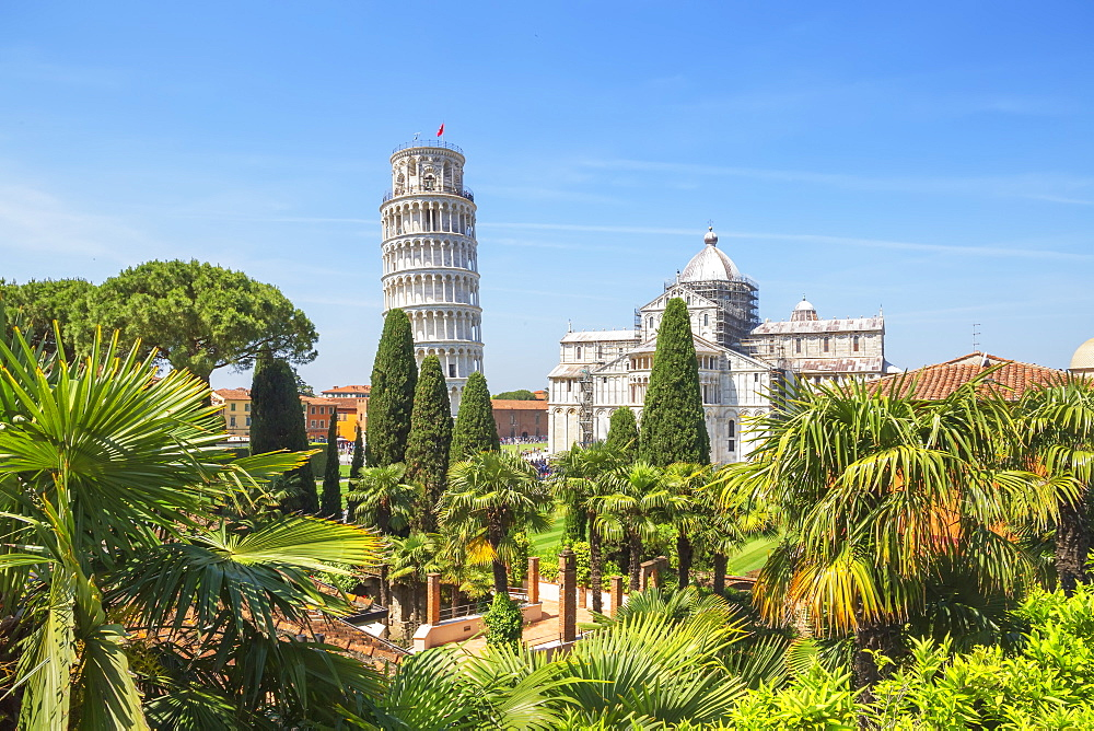 Leaning Tower, Campo dei Miracoli, UNESCO World Heritage Site, Pisa, Tuscany, Italy, Europe - 718-2291