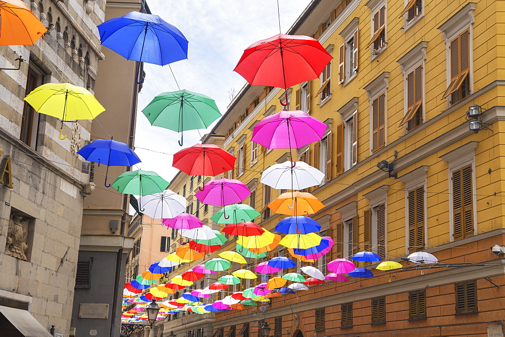 Brightly coloured floating umbrellas, Genoa, Liguria, Italy, Europe - 718-2309