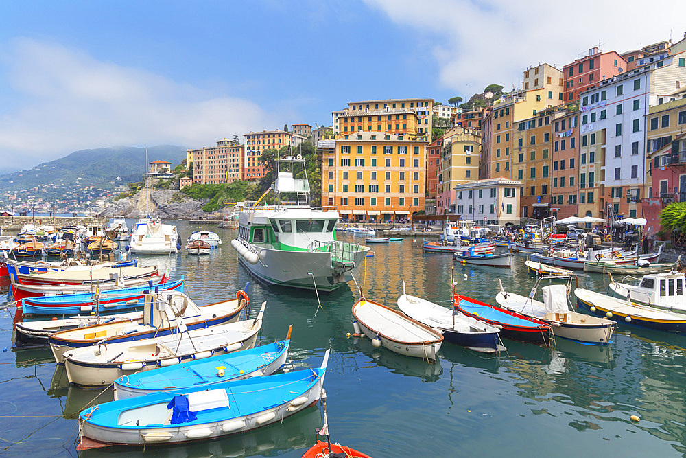 Camogli fishing port, Camogli, Riviera di Levante, Liguria, Italy, Europe