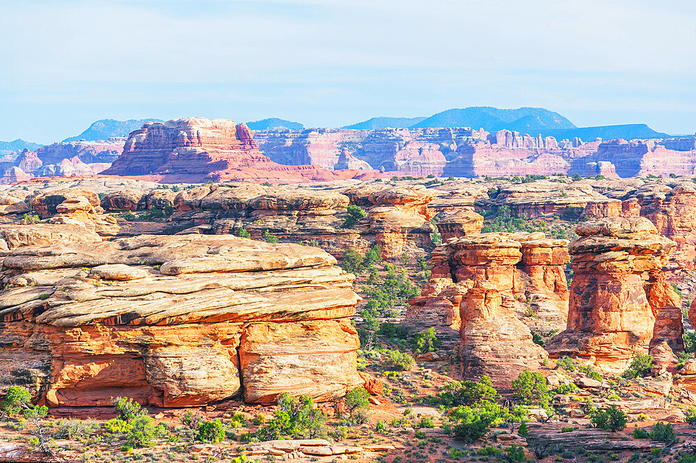 Rock formations, Chesler Park, The Needles district, Canyonlands National Park, Utah, USA - 718-2609
