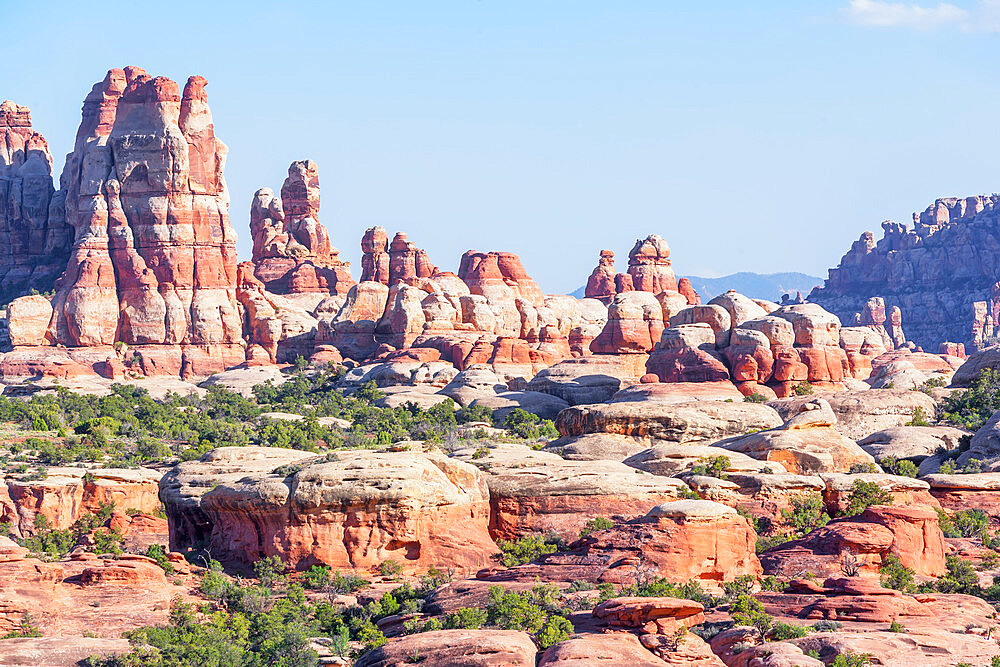 Sandstone pinnacles, Chesler Park, The Needles district, Canyonlands National Park, Utah, USA - 718-2612