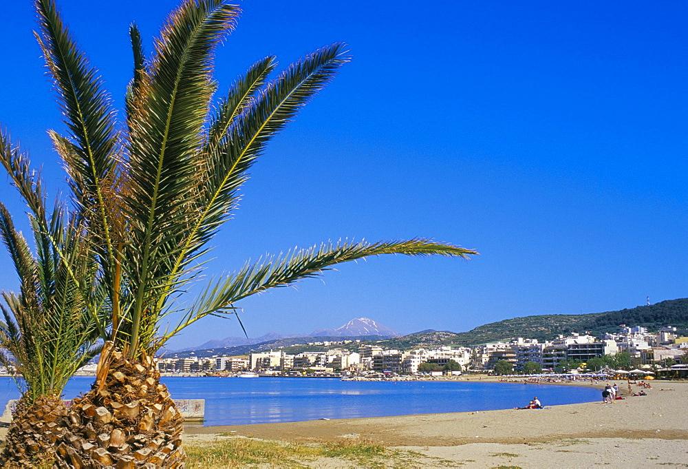 Palm tree and Rethymo beach, Rethymno (Rethymnon), island of Crete, Greece, Mediterranean, Europe