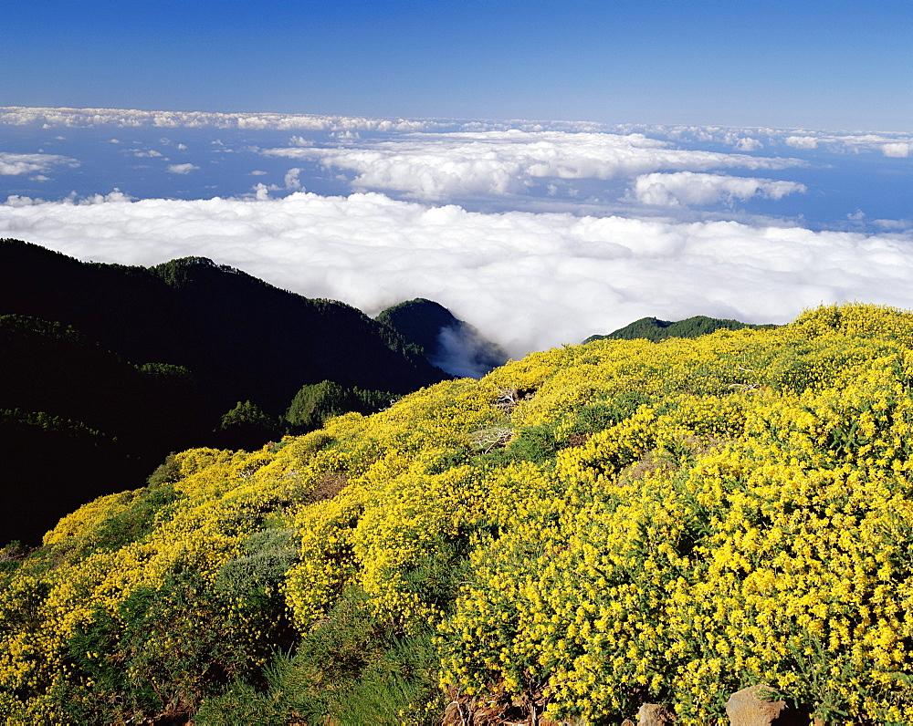 Landscape and clouds near Roque de los Muchachos, Parque Nacional de la Caldera de Taburiente, La Palma, Canary Islands, Spain, Europe