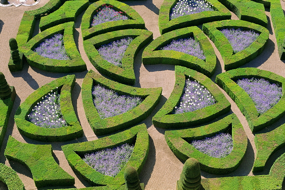 Formal gardens, Chateau of Villandry, Indre et Loire, Loire Valley, France, Europe - 724-1197