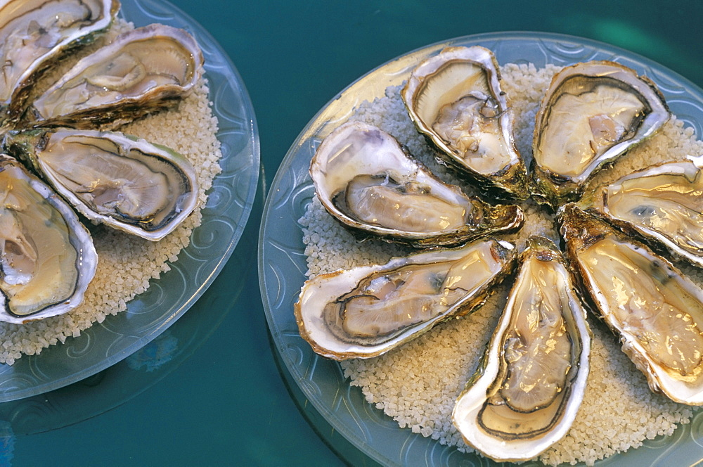 Bouzigues oysters, Chez Philippe, Marseillan port, Herault, Languedoc-Roussillon, France, Europe - 724-1323
