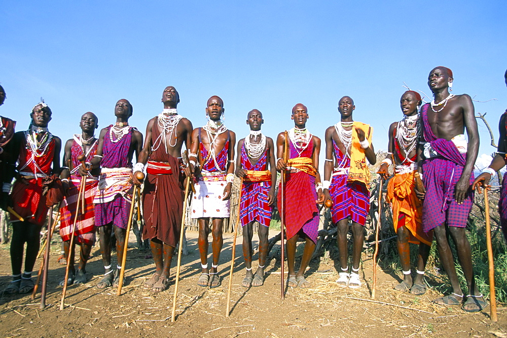 Alamal, ritual festival, Maasai village (manyatta), Rift Valley, southeast Kenya, East Africa, Africa - 724-1329