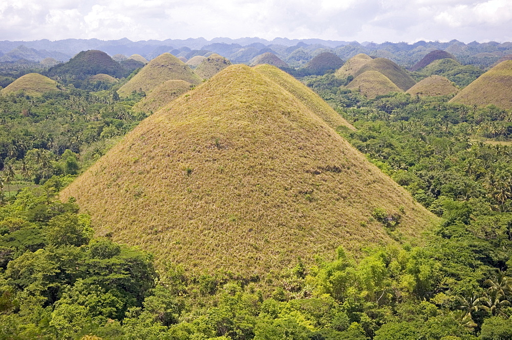 The Chocolate Hills, mounds of earth where grasses turn from green to brown during summer, of mysterious origin, Bohol island, The Philippines, Southeast Asia, Asia