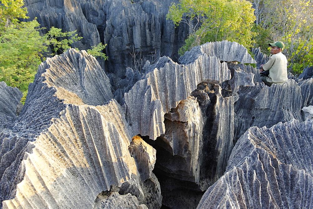 Tsingy de Bemaraha Strict Nature Reserve, UNESCO World Heritage Site, near the western coast in Melaky Region, Madagascar, Africa