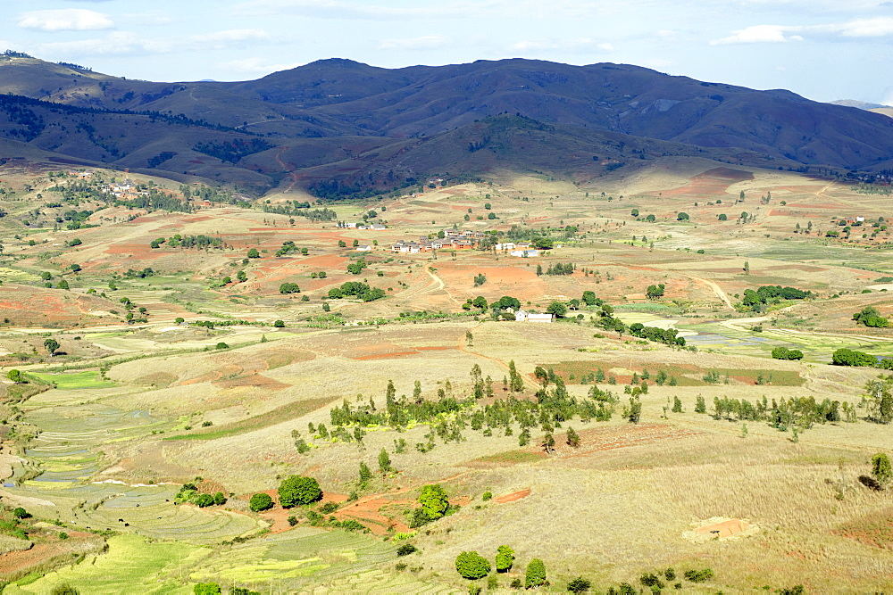 Landscape of the Highlands, Fianaranstoa region, Madagascar, Africa  - 724-2463