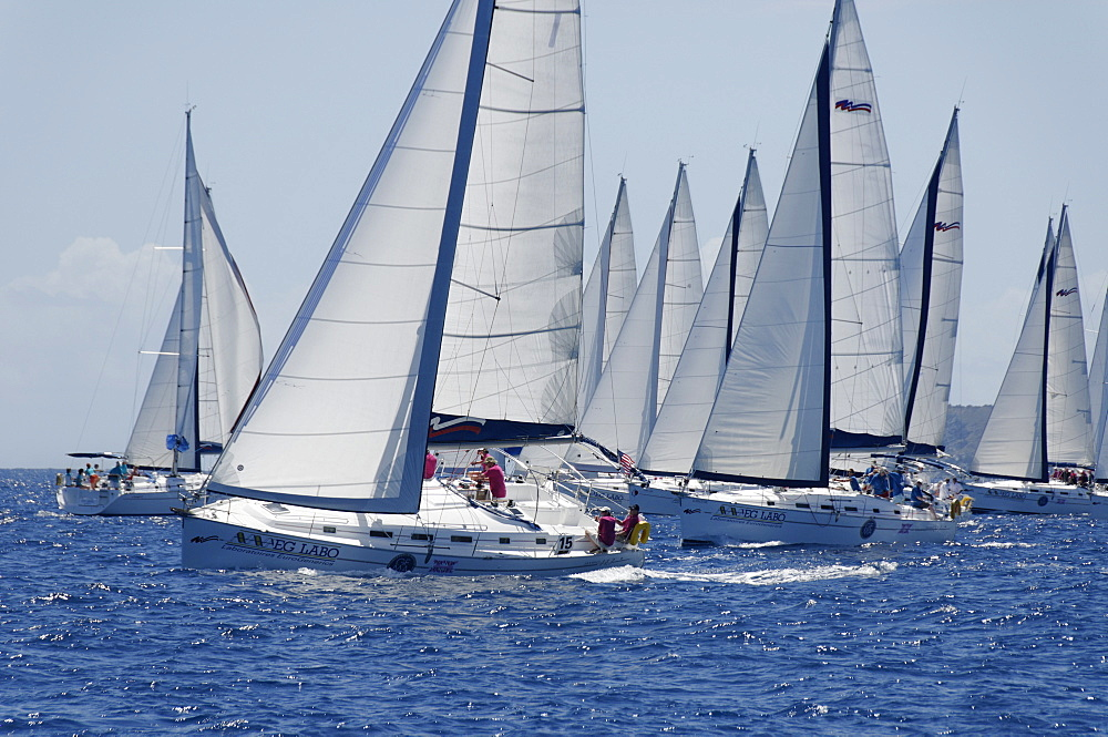 Sailboat regattas. British Virgin Islands, West Indies, Caribbean, Central America - 724-2479