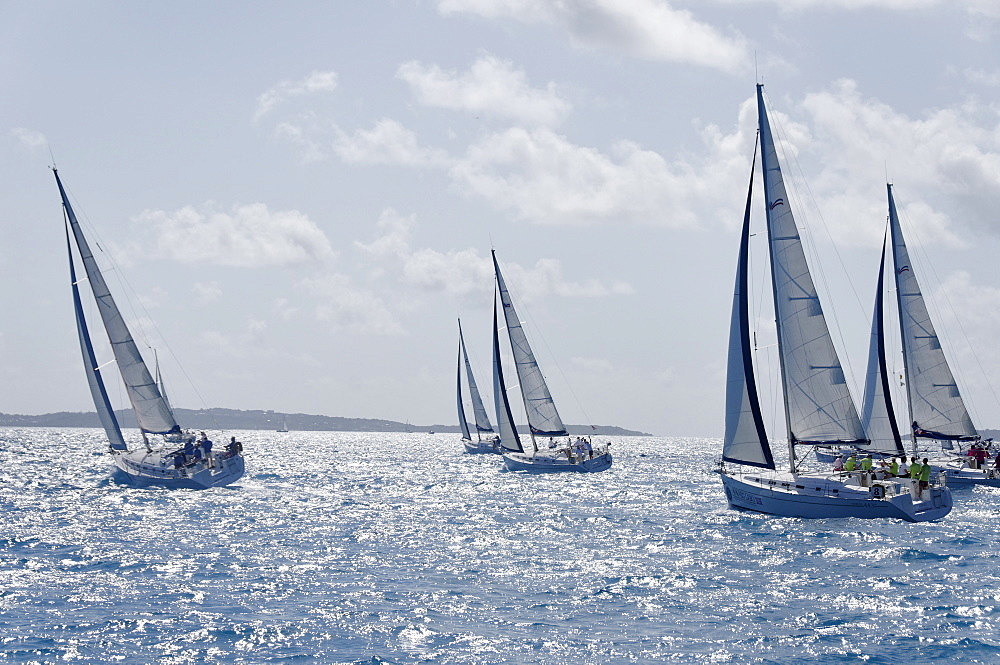 Sailboat regattas. British Virgin Islands, West Indies, Caribbean, Central America - 724-2485