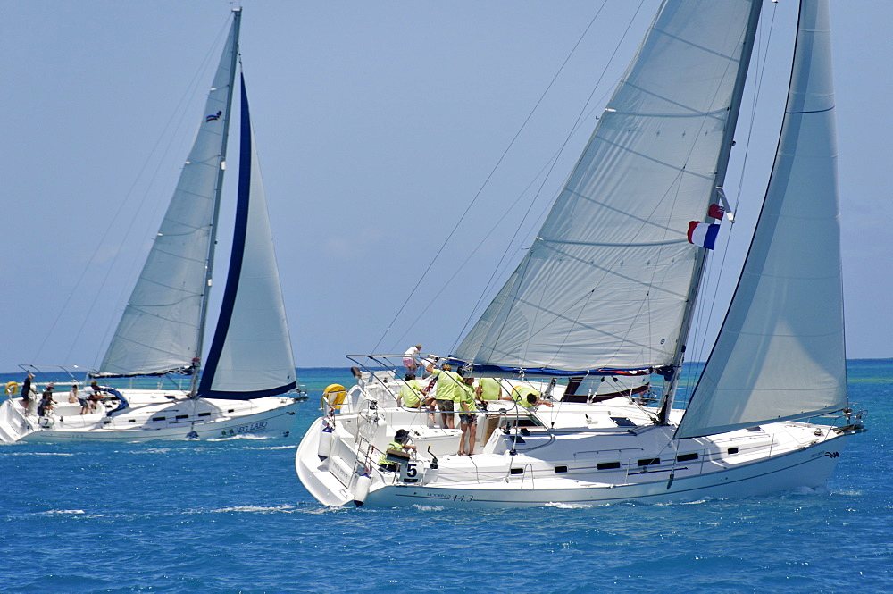 Sailboat regattas. British Virgin Islands, West Indies, Caribbean, Central America - 724-2497