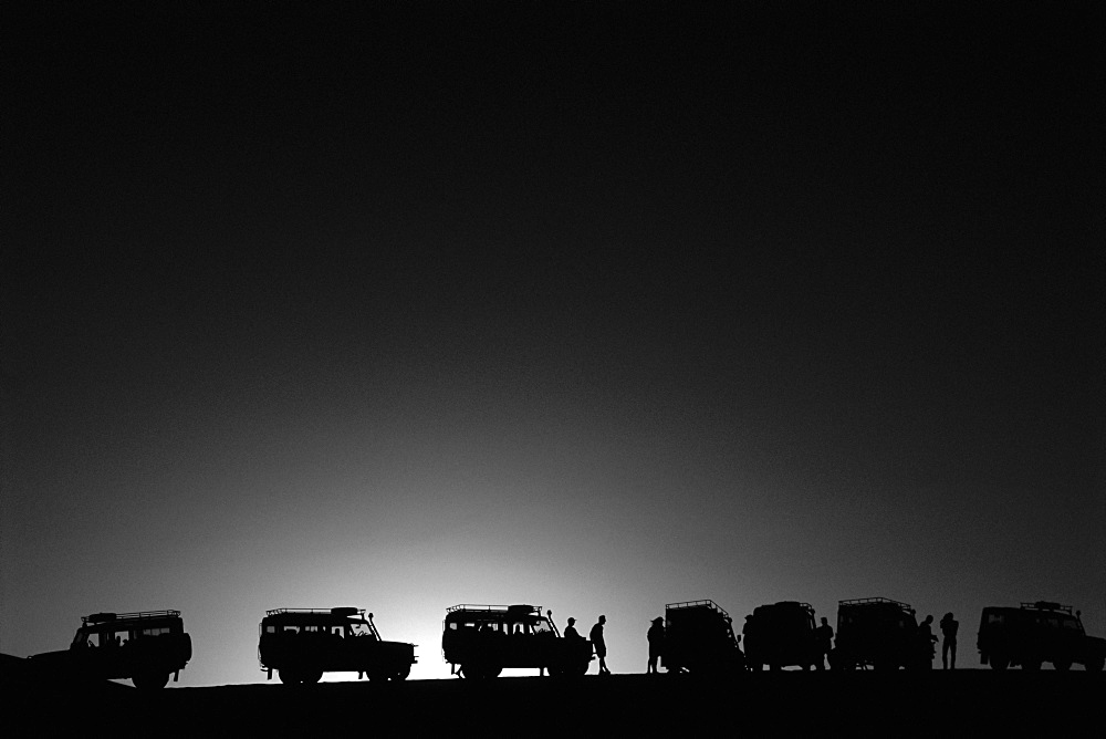 Land Rovers on safari, Africa - 728-1371