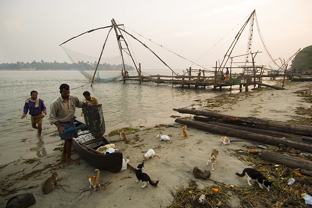 Chinese Fishing Nets, Cochin, Kerala, India