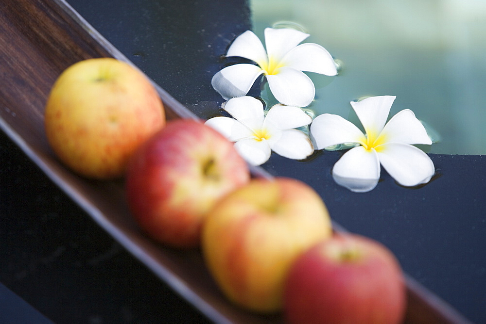 Apples in Tray - 728-3646