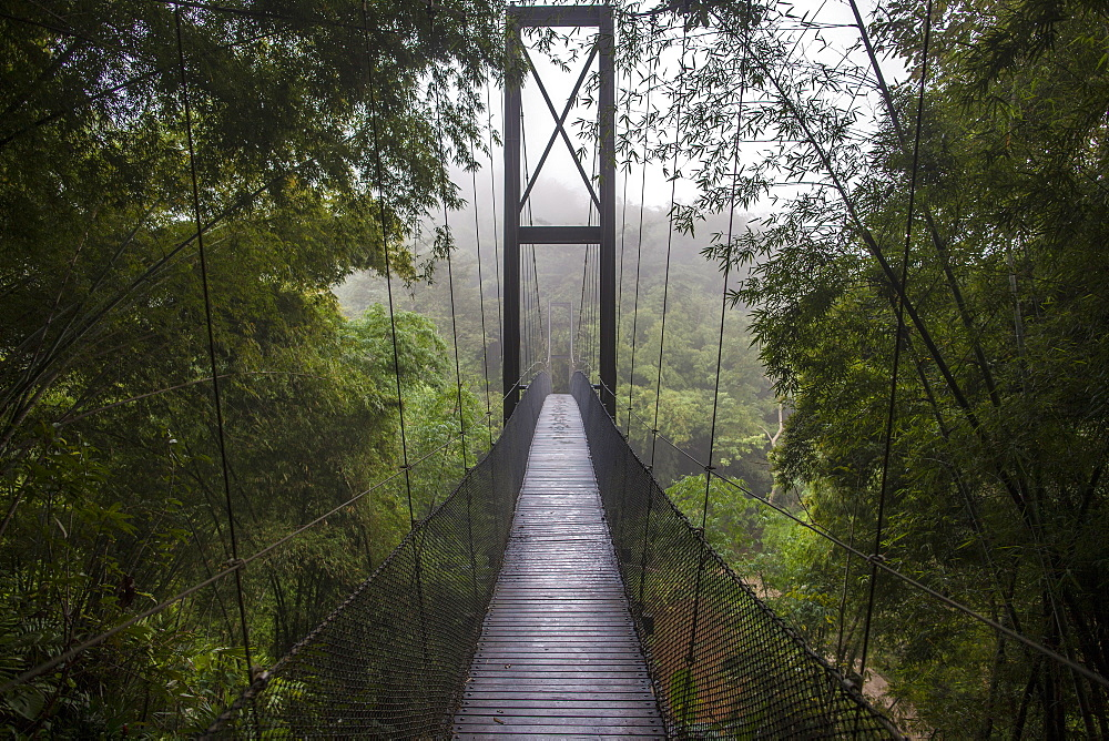 Rope Bridge, Golden Triangle, Northern Thailand, Thailand, Southeast Asia, Asia
