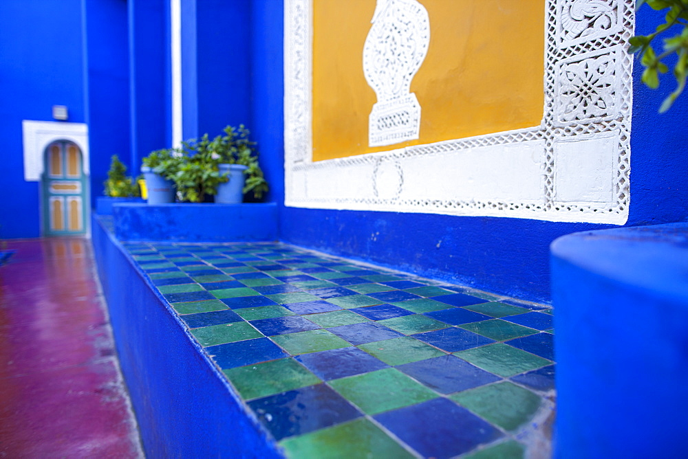 Jardin Majorelle, Marrakech, Morocco, North Africa, Africa - 728-5511