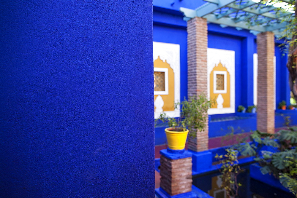 Jardin Majorelle, Marrakech, Morocco, North Africa, Africa