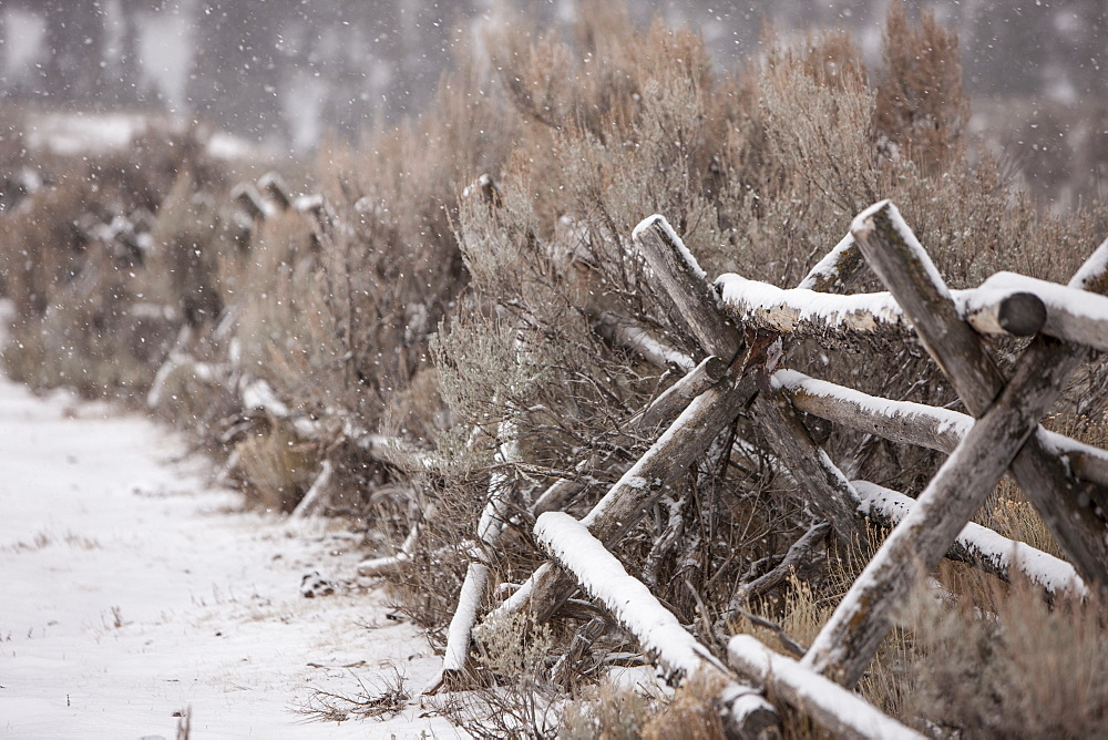 Traditional fence, Jackson Hole, Wyoming, United States of America, North America